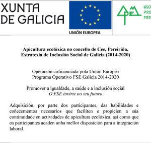 FSE_gallego-cee
