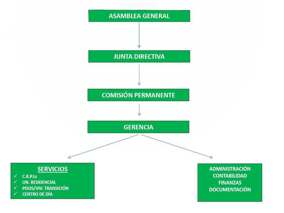 Organigrama Organización
